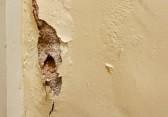 23044108-mur-de-platre-endommage-dans-le-besoin-de-renovation-par-les-peintres-et-les-decorateurs-interieur-d
